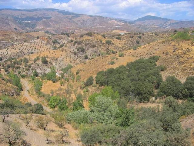Bed Cortijo For Sale in Cadiar